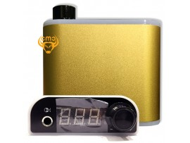 Biến điện PS111 - Gold